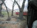 trenino rosso 003
