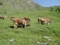 20120629 valles 067