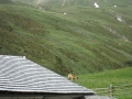 20120629 valles 072