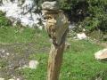 20120629 valles 094
