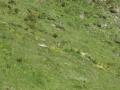 20120629 valles 095
