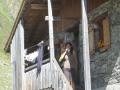 201208 Tures Aurina 268