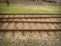 treni 091